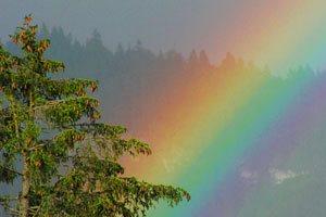 Exklusives Design - Regenbogen