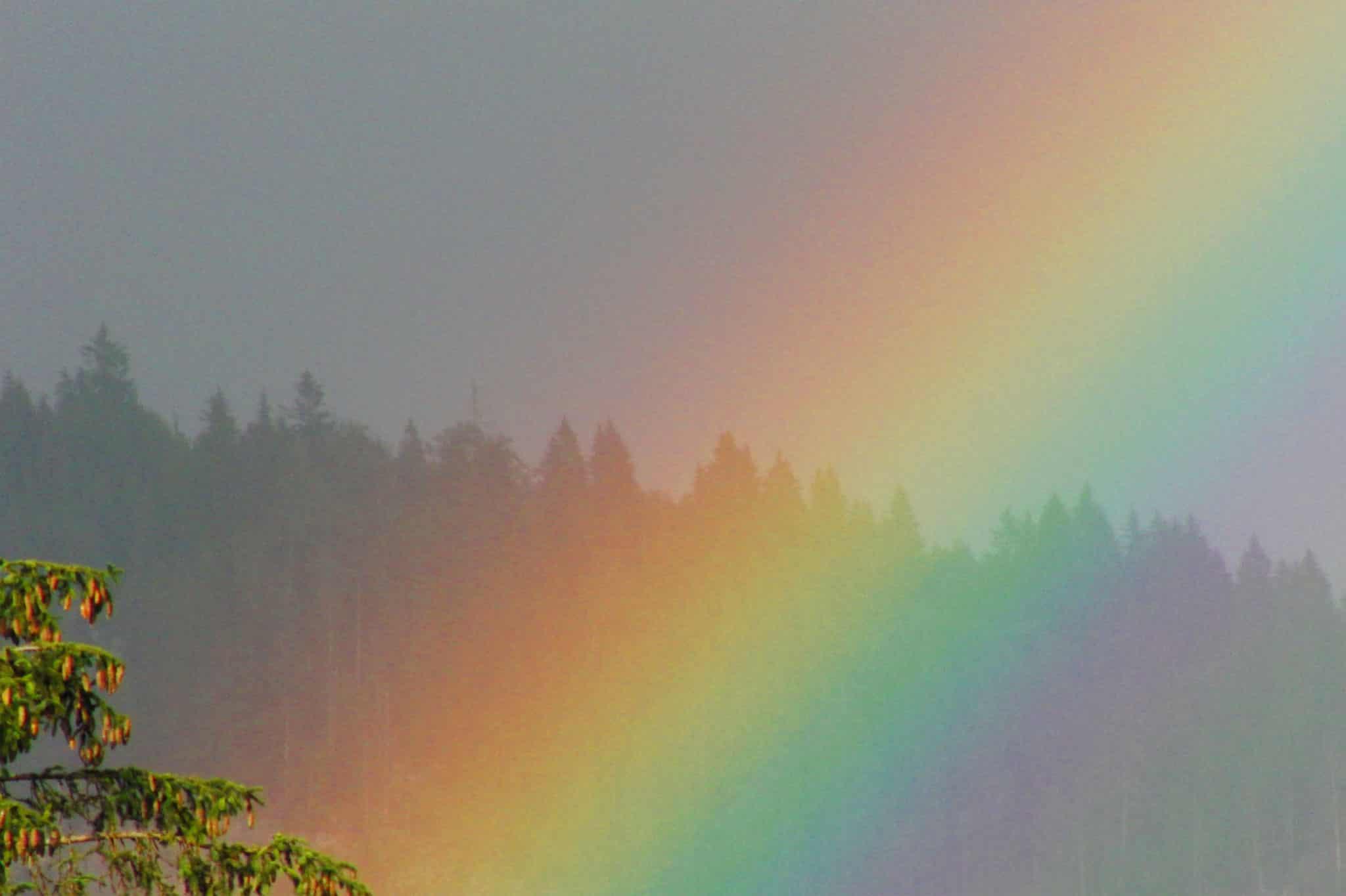 Regenbogen ganz nah - Sonnenalm Bad Mitterndorf