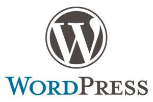 WordPress Basiswissen - Beispiel-Website